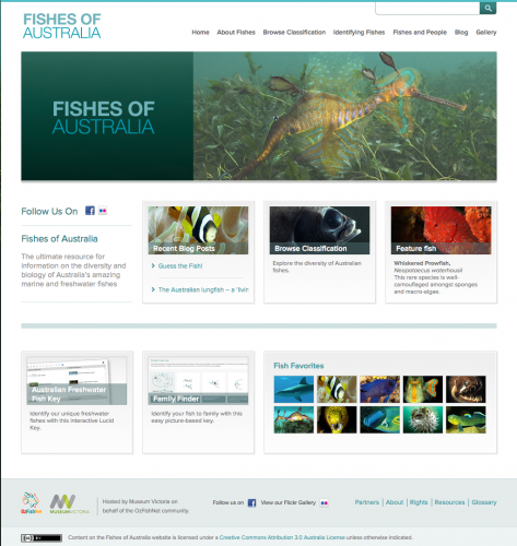 Fishesofaustralia website