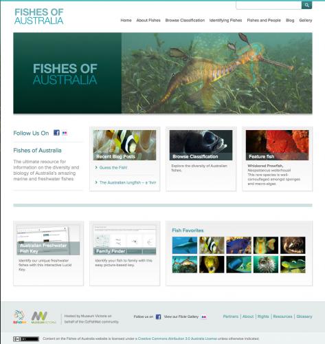 Fishesofaustralia website