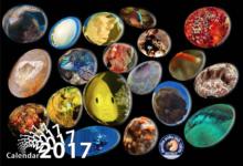 Nautilus Calendar 2017